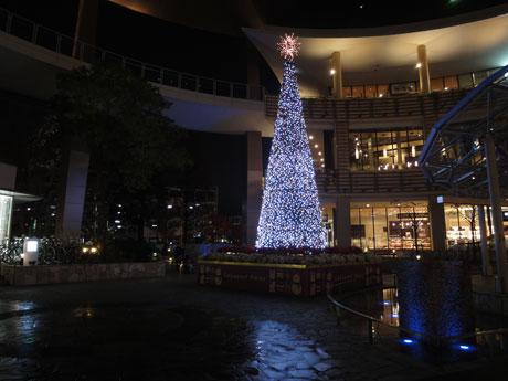 2011.12.16-クリスマスツリー01.jpg