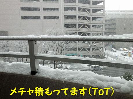 雪ー02.jpg